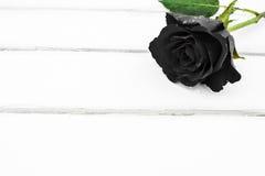 Uma rosa preta Imagem de Stock Royalty Free