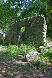 Uma ruína na floresta Fotografia de Stock