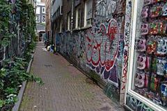 Uma rua estreita em Amsterdão 26 Foto de Stock Royalty Free