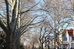 Uma rua quieta em Brooklyn, NY Fotografia de Stock
