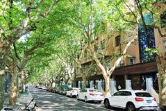 Uma rua quieta no verão Shanghai fotos de stock royalty free