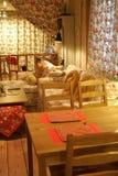 Uma sala de visitas Foto de Stock