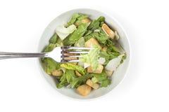 Uma salada verde fresca Foto de Stock Royalty Free