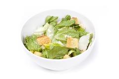 Uma salada verde fresca Foto de Stock