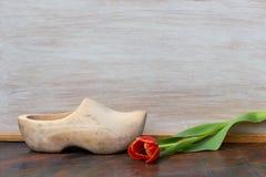 Uma sapata de madeira holandesa e uma tulipa vermelha fotografia de stock