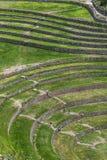 Uma seção dos círculos antigos incríveis do Moray no Peru imagens de stock royalty free