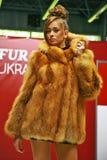 Uma senhora mantida bonita Foto de Stock Royalty Free