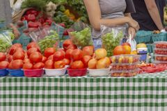 Uma senhora para em uma tabela enchida com os tomates vermelhos vibrantes no mercado exterior imagem de stock