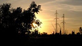 Uma silhueta de uma árvore coa muitos ramos, estando contra o por do sol e as antenas vídeos de arquivo