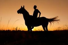 Uma silhueta do cavaleiro a cavalo no por do sol Foto de Stock Royalty Free