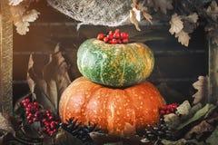 Uma tabela decorada com abóboras, festival da colheita, ação de graças feliz Fotos de Stock Royalty Free
