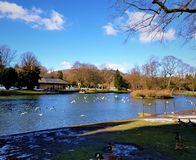 Uma tarde bonita do céu azul no parque após dias nevados imagem de stock