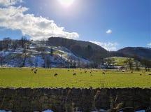 Uma tarde fria com céu azul fotografia de stock