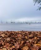 Uma tarde nebulosa do outono Fotos de Stock Royalty Free