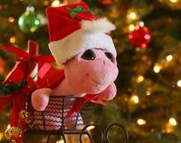 Uma tartaruga em um chapéu de Santa em um trenó Fotos de Stock Royalty Free