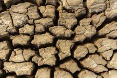 Uma terra seca imagens de stock