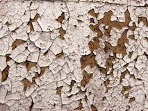 Uma textura da parede Foto de Stock Royalty Free