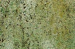 Uma textura da pintura verde em um metal Foto de Stock Royalty Free