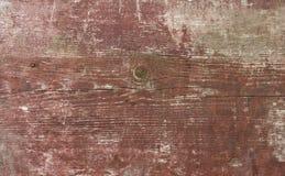 Uma textura da placa de madeira imagem de stock royalty free