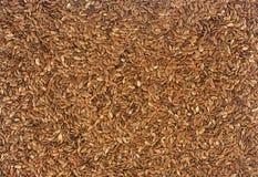 Uma textura das sementes de linho Foto de Stock Royalty Free