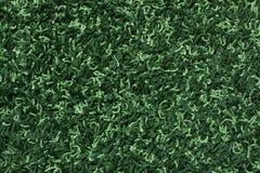 Uma textura verde do tapete fotografia de stock