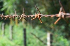 Uma torção afiada do arame farpado Fotografia de Stock