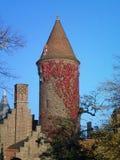 Uma torre aguçado coberta em videiras vermelhas Foto de Stock Royalty Free
