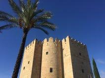 Uma torre e uma palmeira moorish fotografia de stock royalty free