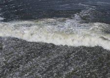 Uma torrente da água Cascatas da água Rio da montanha imagem de stock