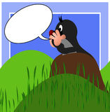 Uma toupeira gritando ilustrada Fotos de Stock Royalty Free