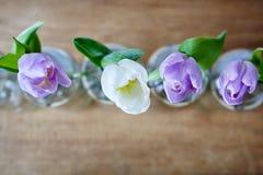 Uma tulipa violeta e foco criativo das garrafas vazias foto de stock