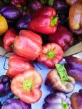Uma variedade colorida de pimentos de Bell frescos fotografia de stock