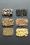 Uma variedade de sementes secas em um fundo preto: Noite, salada, beterraba, espinafres, cebola, aneto, mel?o, cenoura, erva-doce foto de stock