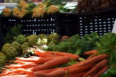 Uma variedade de vegetarianos frescos Fotografia de Stock Royalty Free