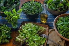 Uma variedade de verdes frondosos recentemente escolhidos prontos para a fatura da salada imagem de stock