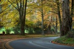 Uma viagem por estrada da viagem do outono imagem de stock