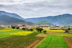 Uma vila bonita Imagens de Stock
