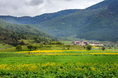 Uma vila bonita Fotografia de Stock