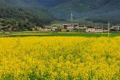 Uma vila bonita Fotos de Stock
