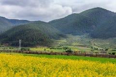 Uma vila bonita Fotografia de Stock Royalty Free