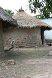 Uma vila rural de Gâmbia foto de stock royalty free