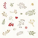Uma vinheta retro delicada das flores, das bagas e dos pássaros Mal de Vetor imagens de stock