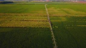 Uma vista aérea de um sistema de extinção de incêndios agrícola em um campo da melancia video estoque