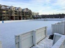 Uma vista agradável de uma grande pista exterior do hóquei em gelo em Edmonton, Alberta, Canadá imagem de stock