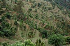 Uma vista cênico de Almora, Kumaun, Índia fotografia de stock