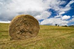 Uma vista da paisagem da colheita em Rolling Hills em Romênia com redondo Foto de Stock Royalty Free