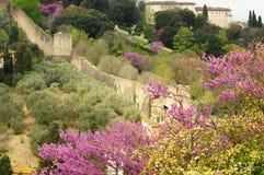 Uma vista das paredes do forte di Belvedere em Florença em Itália, tomadas de Piazzale Michelangelo em um dia de mola imagens de stock