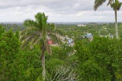 Uma vista de cima sobre de uma cidade coberto de vegetação com as árvores verdes Imagem de Stock