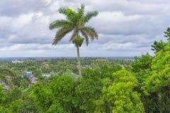 Uma vista de cima sobre de uma cidade coberto de vegetação com as árvores verdes Fotografia de Stock