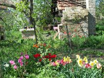 Uma vista de nosso jardim em 2013 imagens de stock royalty free